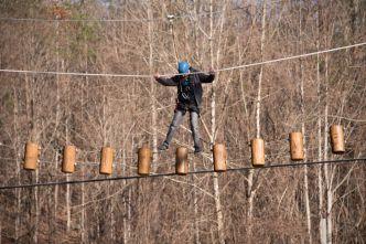 Log-Ladder-Obstacle